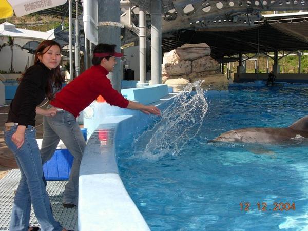 931212 海洋公園海豚10~2.jpg