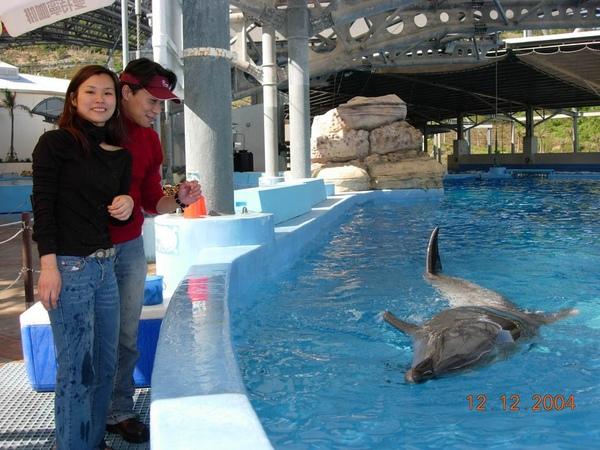 931212 海洋公園海豚12~2.jpg