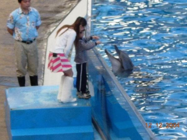931212 海洋公園海豚3~2.jpg