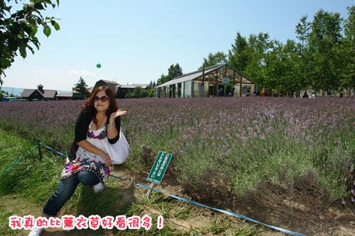 北海道D3-我比花嬌.jpg