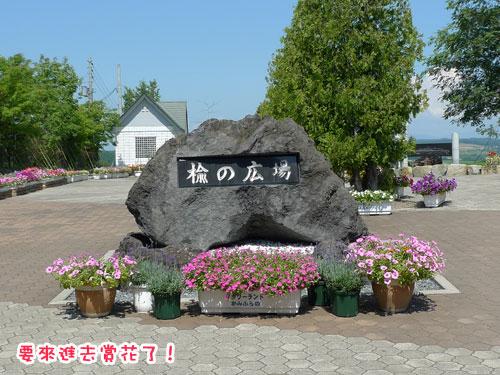 北海道D3-賞花.jpg