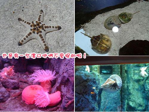 北海道D4-濱口8.jpg