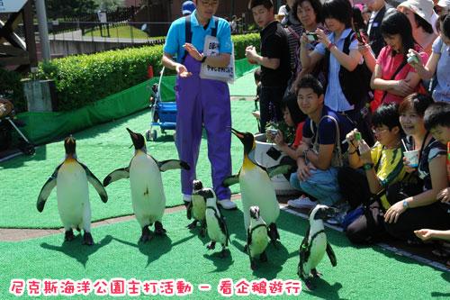 北海道D4-企鵝18.jpg