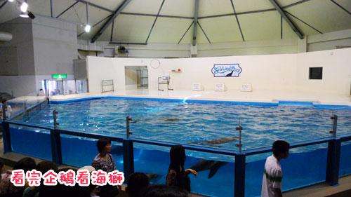 北海道D4-海獅.jpg