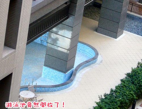土城一周年---游泳池.jpg