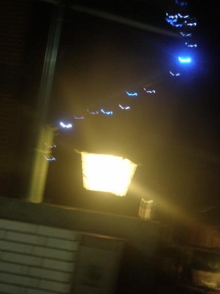 門前的路燈.JPG