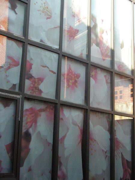 宜蘭藝術中心-布置120081010.JPG