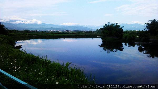 IMAG0354.jpg