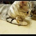 nEO_IMG_P1080363.jpg