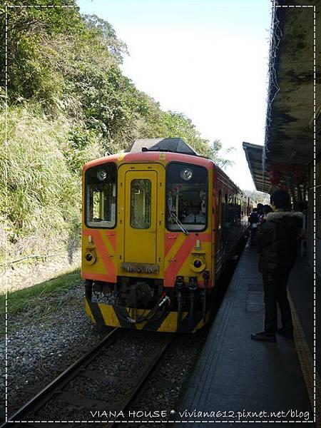 P1160883.JPG