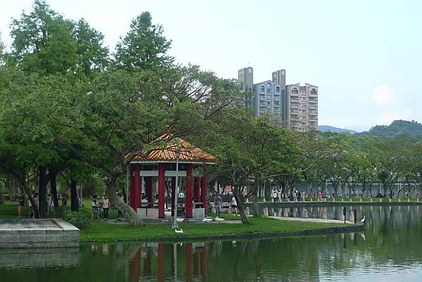 1050702-2大湖公園.JPG