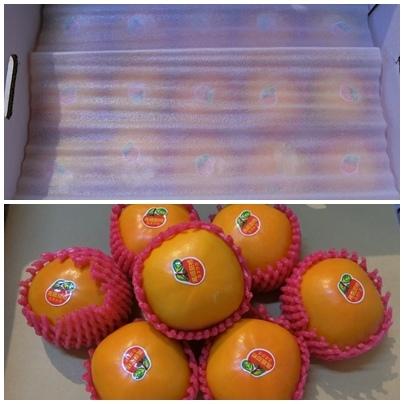1061101-2黃金甜柿.jpg