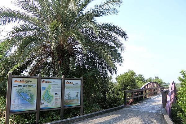 1061125-1大鵬灣崎峰濕地公園.JPG