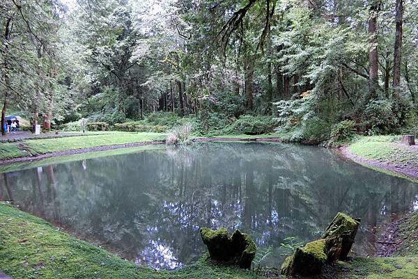 1070916-28阿里山國家森林遊樂區.JPG