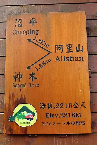 1070916-54阿里山國家森林遊樂區.JPG