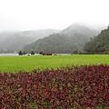 1071209-6礁溪龍潭湖.JPG