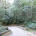 1080105-22鴛鴦谷瀑布.JPG