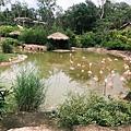 Safari Pho Quoc