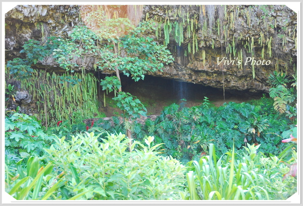 Fern Grotto.JPG