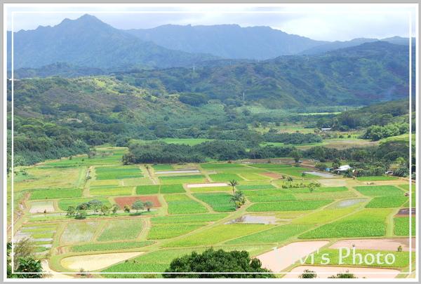 North Kauai.jpg