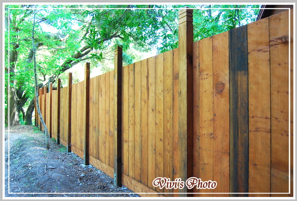 Fence Front(Online).jpg