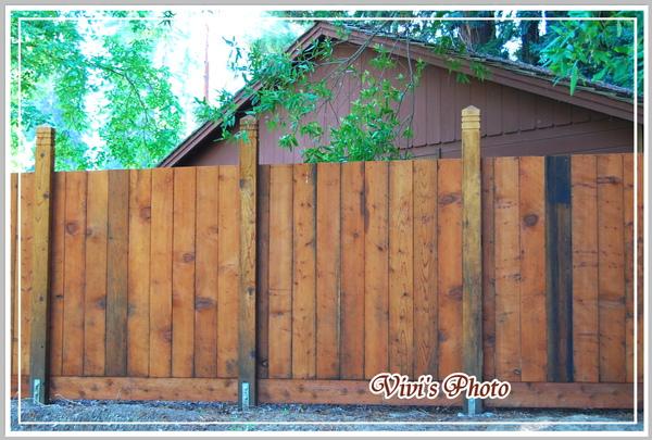 Fence Front-1(Online).jpg