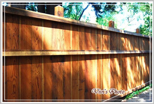 Fence Back(Online).jpg
