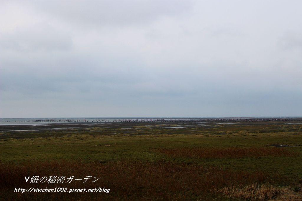 IMG_4945_副本.jpg