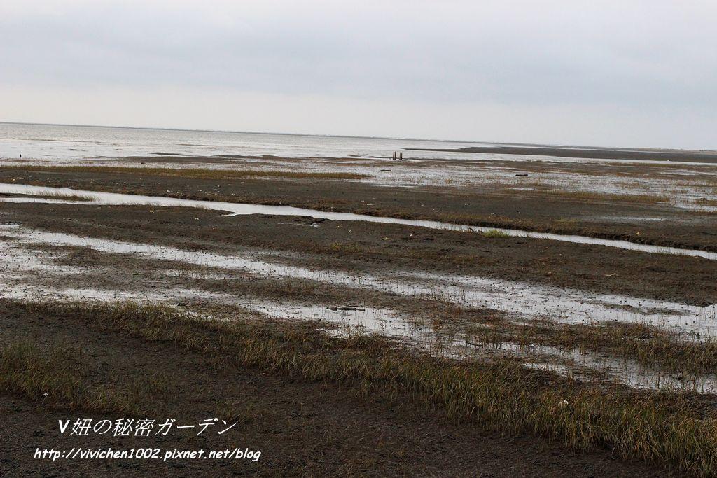 IMG_4959_副本.jpg