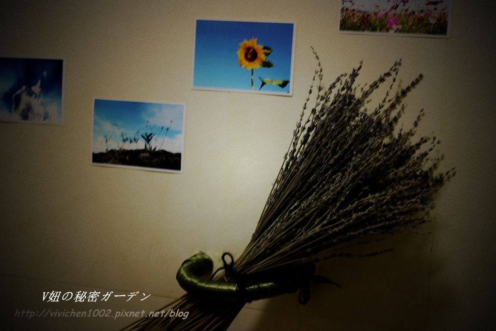 IMG_6155_副本_副本.jpg