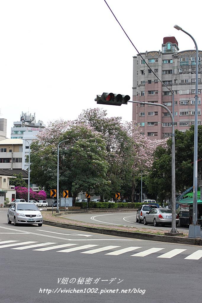 IMG_7241_副本.jpg
