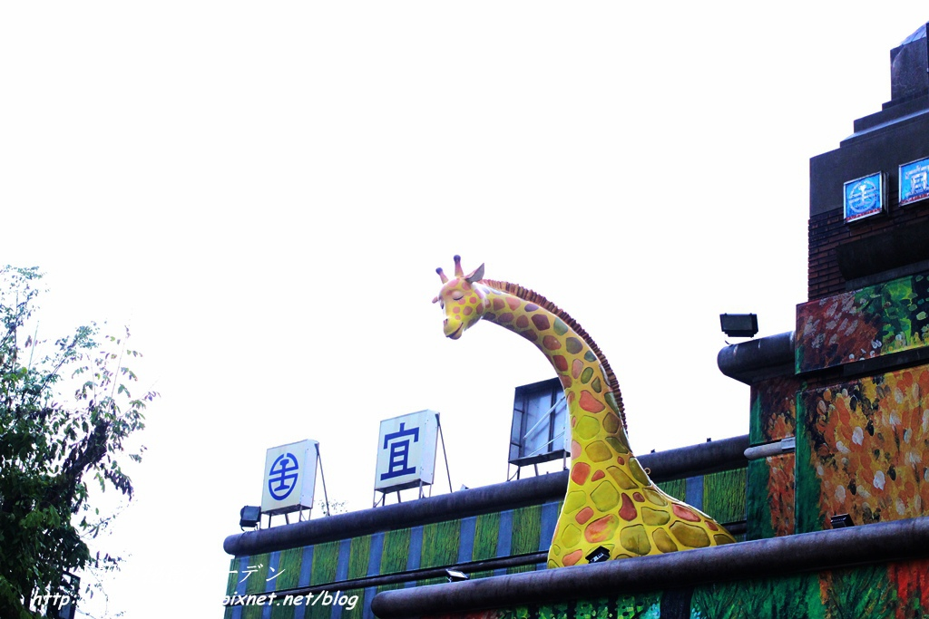 IMG_0235_副本.jpg