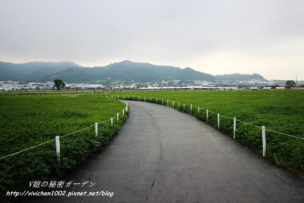 IMG_1495_副本.jpg