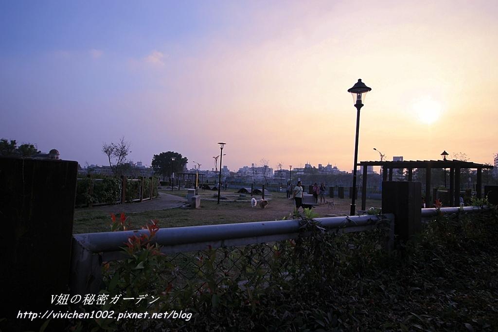 IMG_1579_副本.jpg