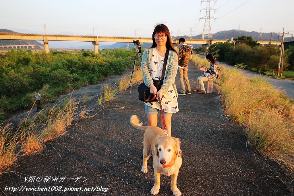 IMG_1075_副本.jpg