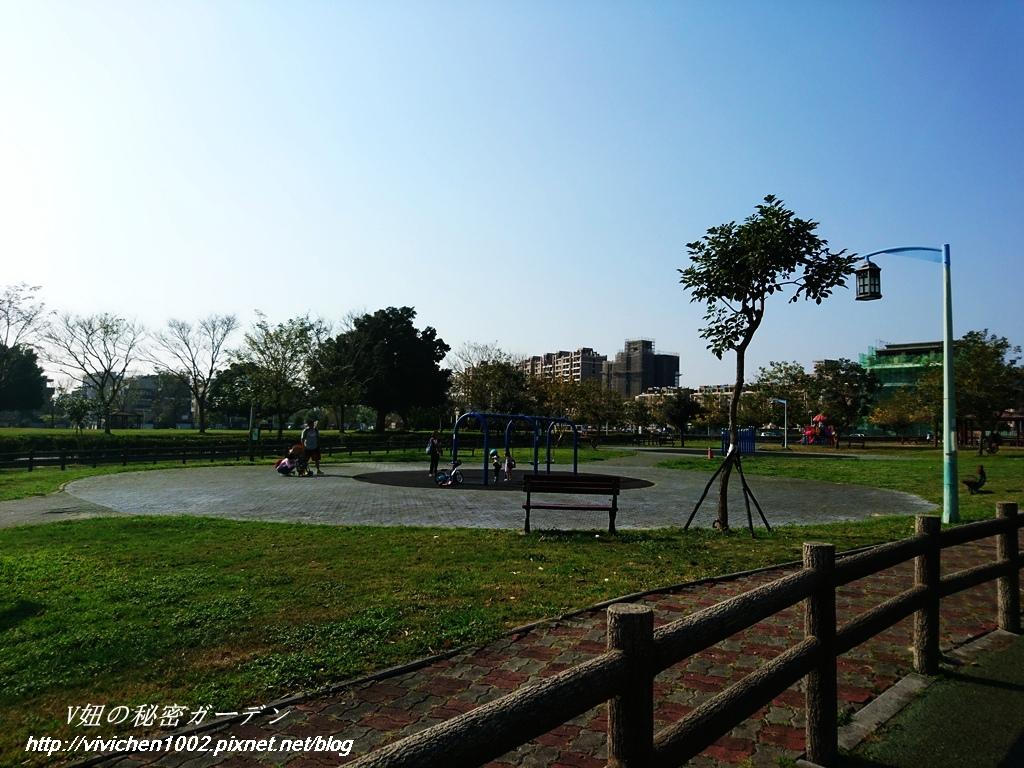 DSC_1334_副本.jpg