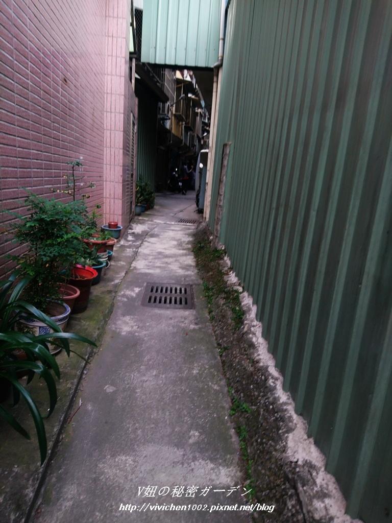 DSC_0938_副本.jpg