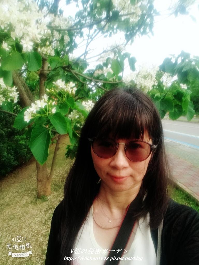 WuTa_2018-04-15_16-10-00_副本.jpg