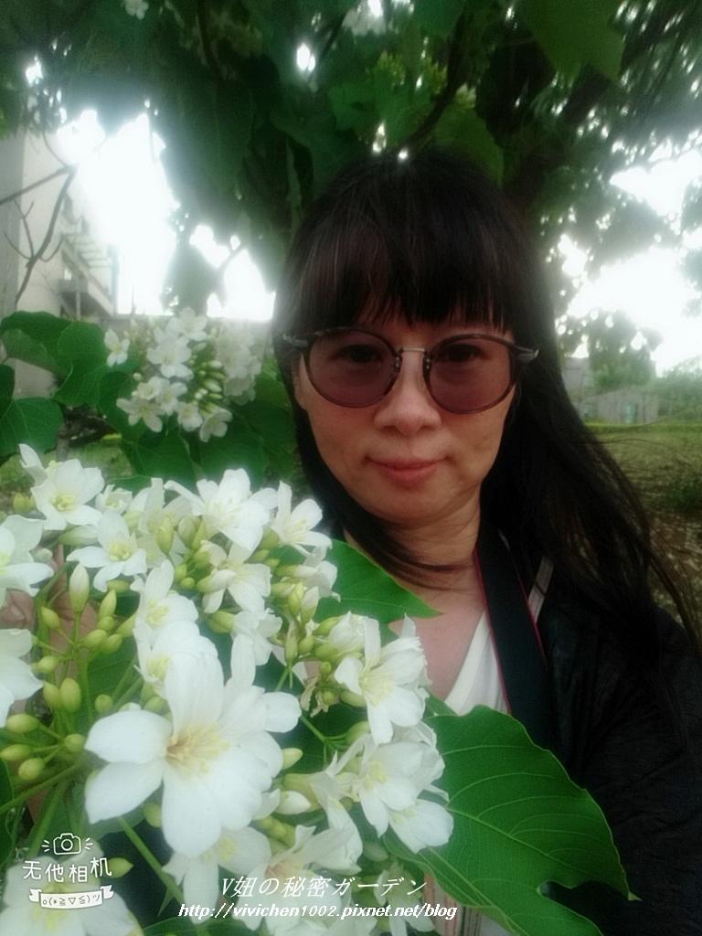 WuTa_2018-04-15_16-13-40_副本.jpg