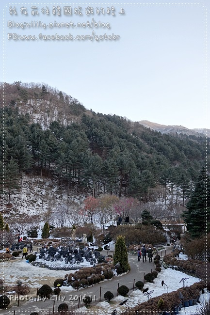 20140101_500.JPG