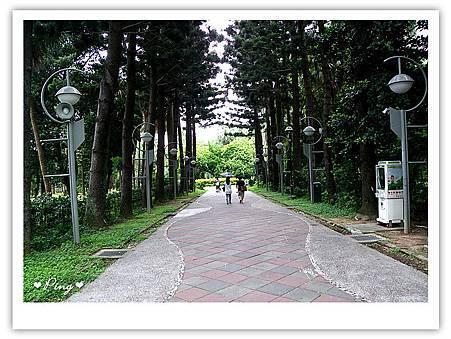 台北市植物園-2.jpg