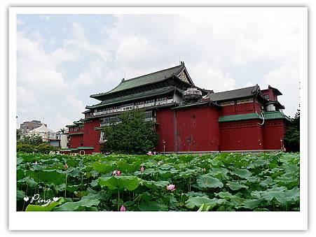 台北市植物園-荷花池.jpg