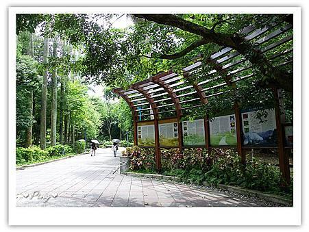 台北市植物園-園內-01.jpg