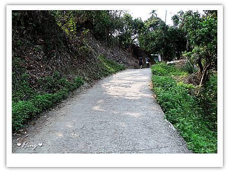 大坑步道-沿途-04.jpg