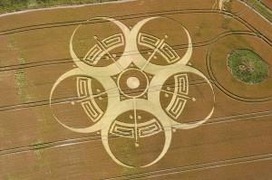 麥田圈重建--遠比你想像中的複雜