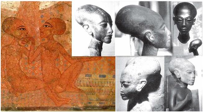第五章 意識進化中埃及的角色《生命之花的古老秘密》_11