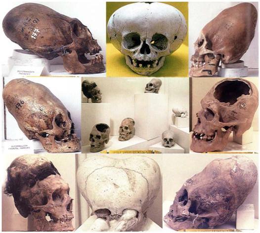 第五章 意識進化中埃及的角色《生命之花的古老秘密》_12