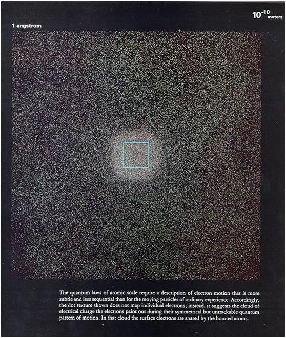 微鏡下看人體,震撼!-012