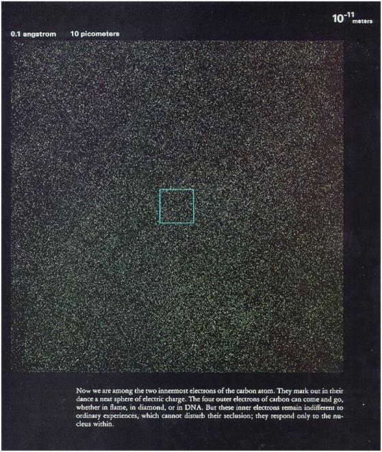 微鏡下看人體,震撼!-013