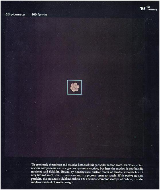 微鏡下看人體,震撼!-015